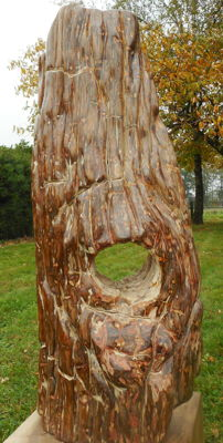 Trunk of petrified wood - 89 x 36 cm - 56 kg