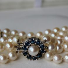 3-row genuine sea/salty Japanese Akoya pearls  bracelet with very good shiny lustre decorated with White gold lock set with 10 beautiful round cut natural Sapphires ca. 1.50CT..