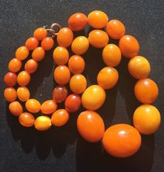 Antique necklace of 100% natural  orange egg yolk Amber, 52.72 grams, from mid and late 19th century