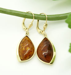 14kt yellow gold earrings with amber
