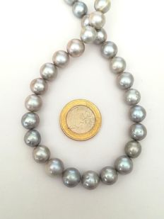 Tahiti baroque pearl necklace with silver clasp