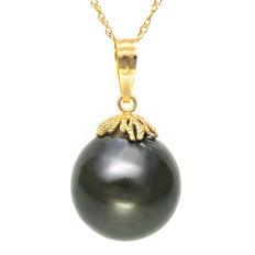 Pendant made of 14 kt Gold with 13.7 x 14.6 mm Genuine Tahitian Black Pearl **no reserve price**