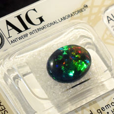 Play of Colour Effect Opal - 1.91 ct