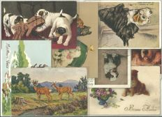 Lot of 98 greeting cards - Animal series - C. early 1900s/1950s