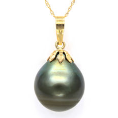 Pendant made of 14 kt Yellow Gold with 13.9 x 16.3 mm Genuine Tahitian Pearl **no reserve price**