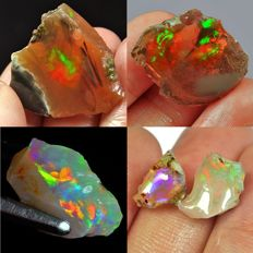 Nice collection of very beautiful opals  - 62,15Ct  (4)