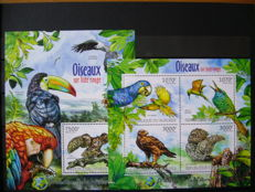Burundi 2011/2013 - Collection of series and blocks in 2 stock books