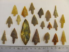 Neolithic arrowheads - 18/61 mm (20)
