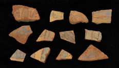 A group of Egyptian Amarna pottery fragments - 7.62 cm X 4.44 inches for largest fragment, 3.81 cm X 3.81 cm for smallest (12x)