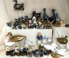 Collection of 84 ducks