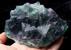 Purple/Green Fluorite crystals - 12 x 10 x 4 cm - 510 g