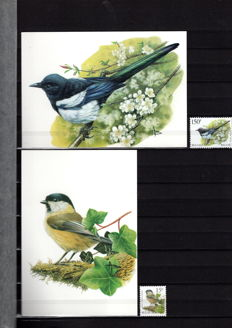 Belgium - Collection with Buzin bird theme