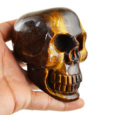 Fine golden Tiger's Eye skull - 83x57x56 mm - 2305 cts