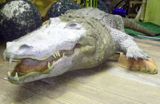 Inflatable automaton - Waterproof Crocodile - 20th century