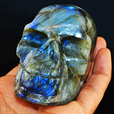Huge Blue-gold flash Labradorite skull - 79x62x45mm - 376 gm