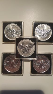 Canada – 5 Dollars 2015 RCM (5 coins) Birds of Prey Series Great Horned Owl – 5 troy oz (155.5 g) .9999 Silver