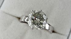 3.69 ct  round diamond ring made of 14 kt white gold - size 7