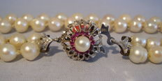 Double row genuine Akoya pearl necklace with 18 kt white gold ruby clasp