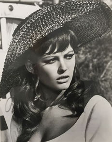 Various unknown - Claudia Cardinale, circa 1960's