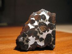 Sericho meteorite - Pallasite (Nickel-Iron matrix with Olivines) - Specimen 67g