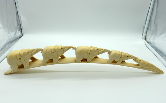 Taxidermy - vintage African Elephant Tusk - fully worked relief - Loxodonta africana  - 55cm - 632gm - CITES No. 17-PT-LX05117/C