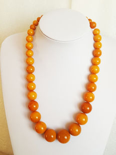 Antique Baltic Amber necklace egg yolk butterscotch, 66 grams