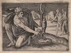 Marco da Ravenna (Act. 1515 - 1527) - A man besides a basket of fish - After a design by Francesco  Salviati  -  Ca. 1525