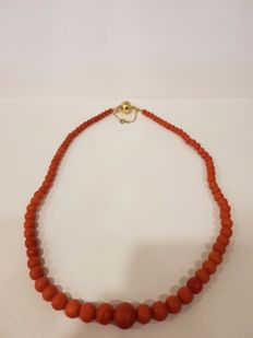 Unique antique precious coral necklace with a 14 kt gold clasp