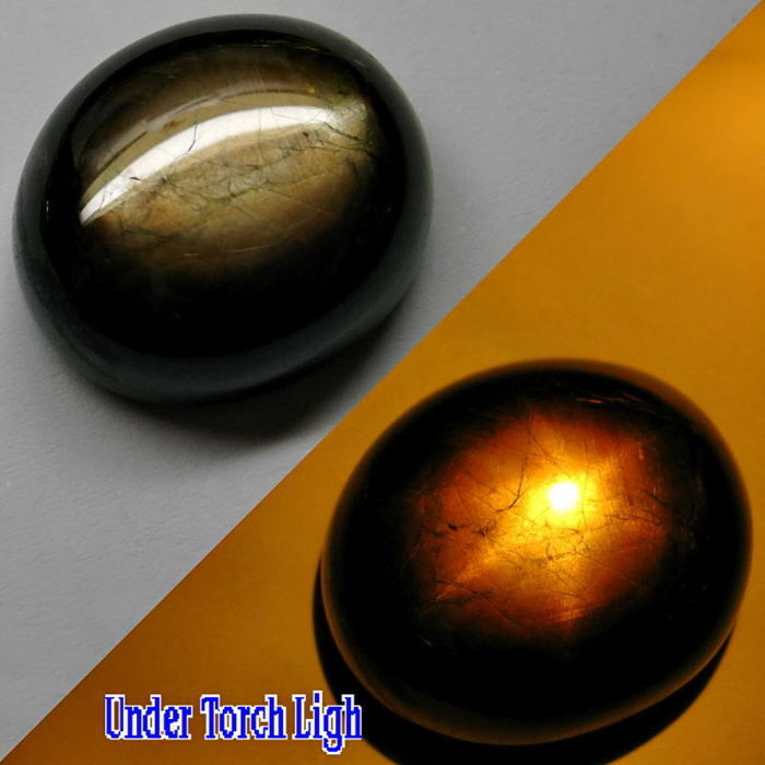 Oval Cabochon Natural Unheated Golden Black 6 Ray Star Sapphire, Madagaskar - 47.46 Cts