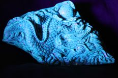 "Blue Amber & ""Leopard"" play of colours/inclusions - carved  Dragon figure on mahogany stand - one piece carving - 61 gm"