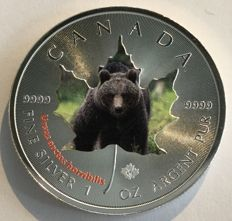Canada - 5 Dollars 2014 'Maple Leaf Wildlife - Grizzly Bear' with colour - 1 oz silver