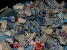 Lightning Ridge Fossil/Crystal Opal Specimens/Rough 2800 cts Multicolours