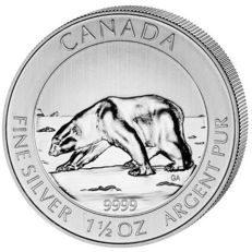 "Canada - 8 dollars 2013 ""Polar Bear ""- 1½ oz of silver"