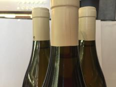 2013 Hermitage 'Arpége' Christelle Betton - 3 Bottles
