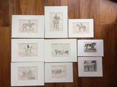 Collection of nine horse prints By E.A.L. Quadekker, captain-horse doctor.
