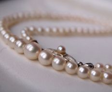 Necklace with genuine Sea/Salty Japanese Akoya pearls with a beautiful lustre of a silver- pink reflection set with 14kt. gold antique lock.