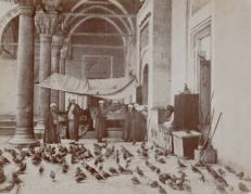 Mihran Iranian (active in the early 19th - early 20th century) - The pigeons of Sultan Bayazid