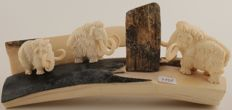 Finely carved Siberian Woolly Mammoth Ivory - 3 Mammoths with ivory bark and carved ivory base - Mammuthus primigenius