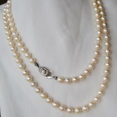 Long ca. 96cm. or 2 row necklace with Sea/Salty Akoya pearls with a shiny lustre set with 14kt. white/yellow gold lock with pearl.