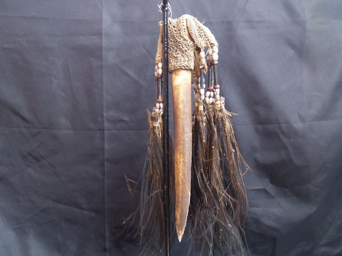 Casuaris Bone dagger collection - SEPIK RIVER - Papua New-Guinea
