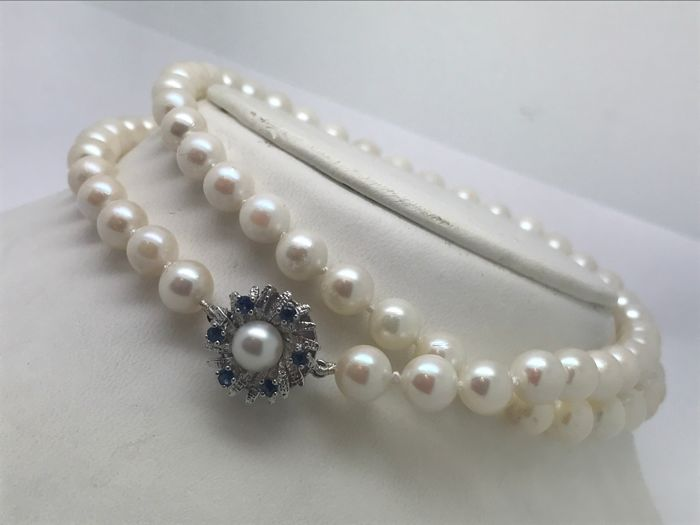 Single strand Akoya pearl necklace approx. 6.7 mm with 14 kt / 585 yellow gold clasp, 6 sapphires, 1 pearl on clasp as a flower