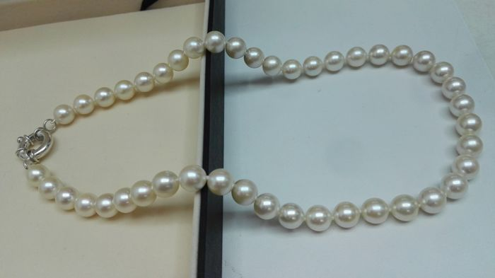 Beautiful necklace made of Japanese Akoya pearls with very good orient and lustre, round shaped with creamy white colour