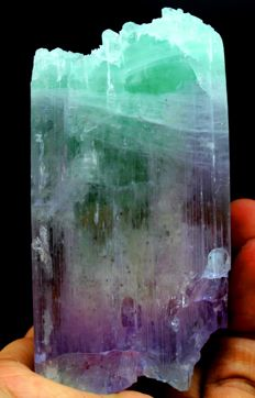 Natural & Terminated Water Eaten Etched Bi-Color Kunzite Crystal with Facet Grade Clarity - 92 x 46 x 25mm - 257gm