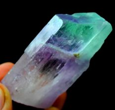 Undamaged & Terminated V-Shape Bi Color Natural Facet Grade Kunzite Crystal - 55 x 25 x 10mm - 49 gr