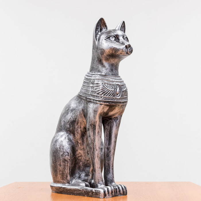 Egyptian cat in silver-grey colour