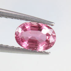 Pink Sapphire - 0.63 Ct - No reserve
