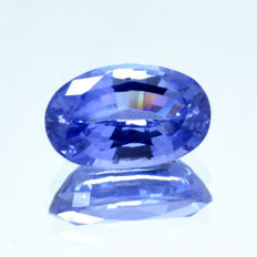 Blue sapphire - 1.34 ct - Not heated