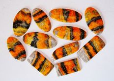 Bumble bee jasper Gemstone lot  760 ct - 11 pcs