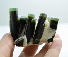 Superb damage free green cap Staknala tourmaline crystals cluster - 62 x 50 x 30mm - 101gr
