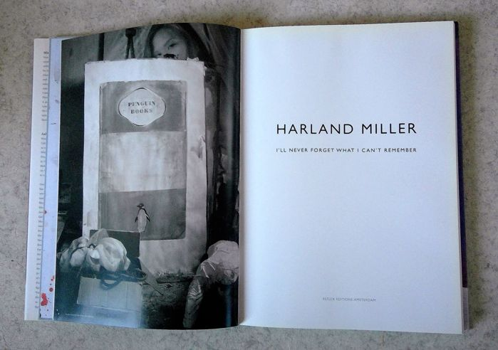 harland miller i ll never forget what i can t remember 2010 catawiki. Black Bedroom Furniture Sets. Home Design Ideas